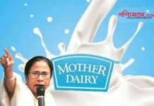 Mother Dairy, mamata banerjee, বাংলা ডেয়ারি, মাদার ডেয়ারি,